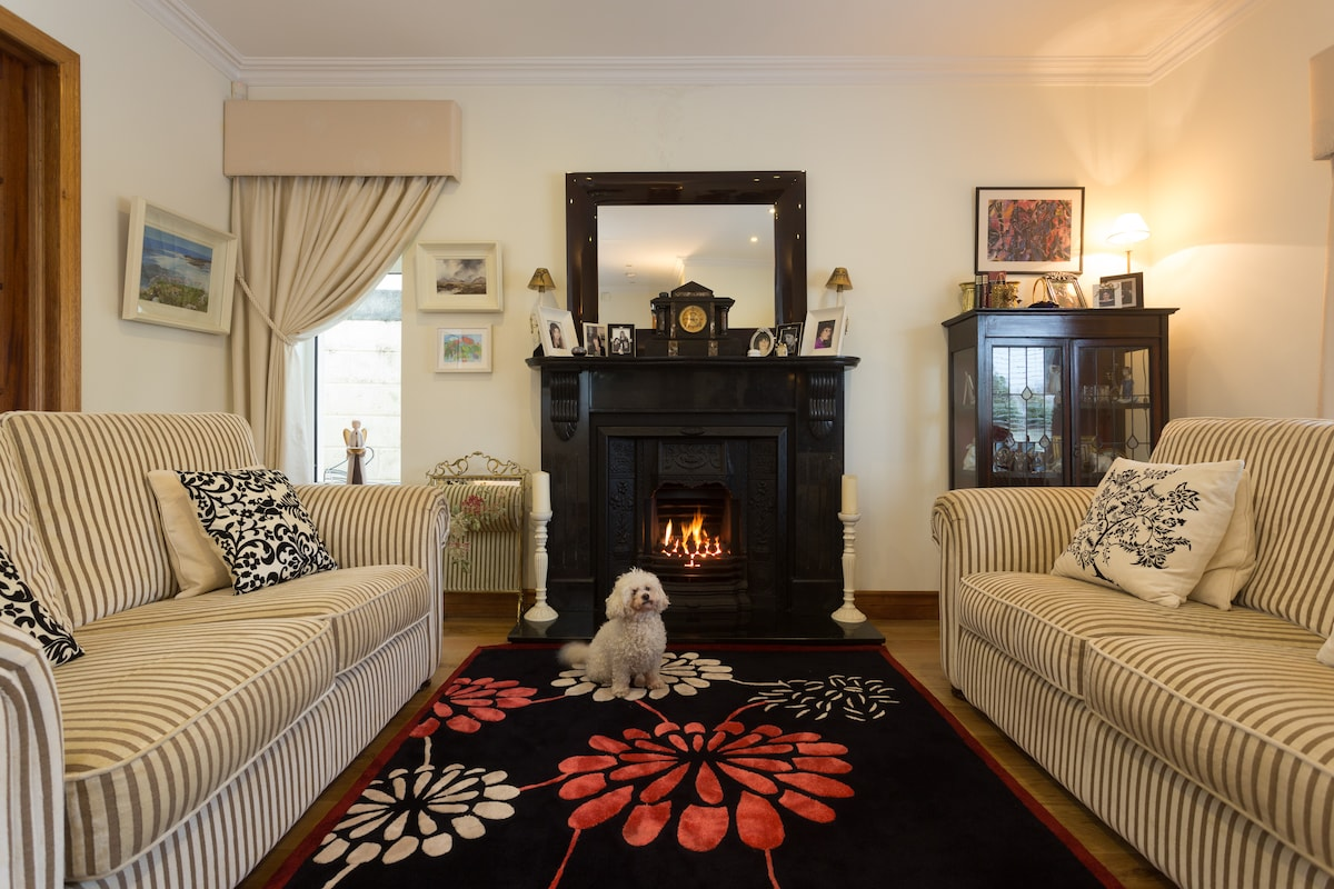 The sitting room with our lovely bichon...Maude