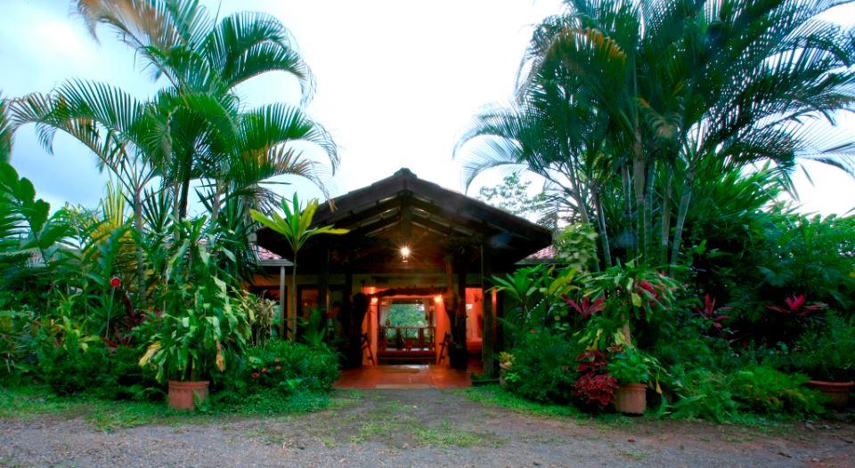 Magical Tropical Fantasy - Room 1