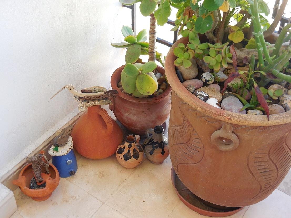 Nos pots de fleurs, choisis avec soin ...