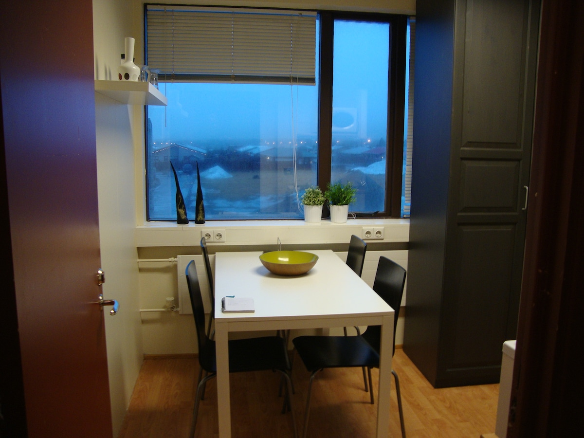 Cozy studio apartment in Selfoss.