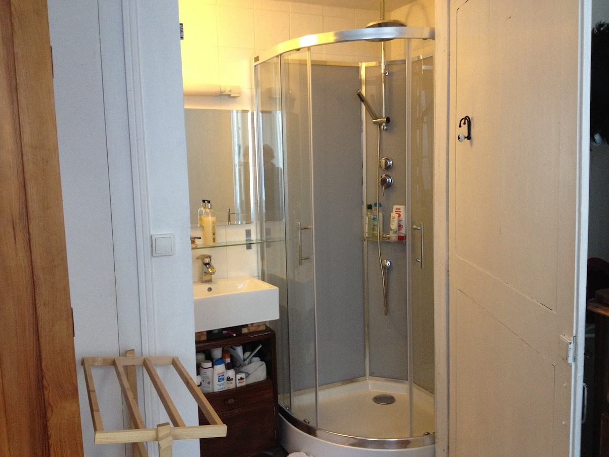 Power shower and basin in quiet single bedroom.