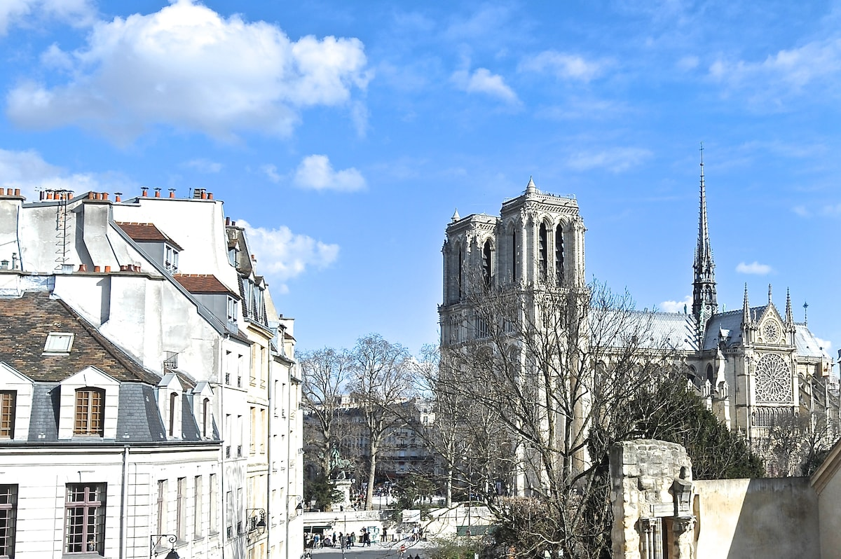 STUNNING VIEW ON NOTRE DAME, FDL