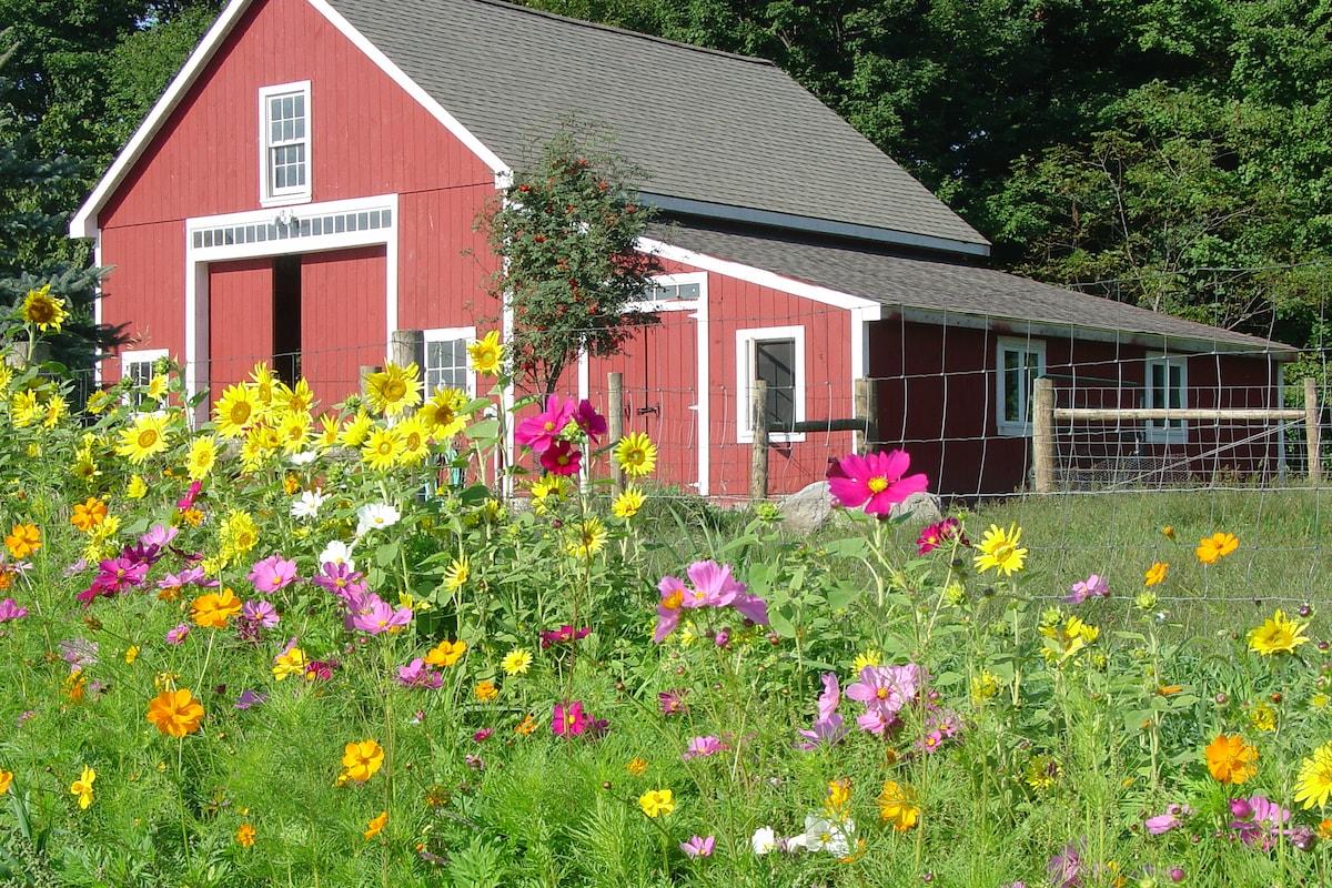 Bryn Meadow Farm B&B & Studio