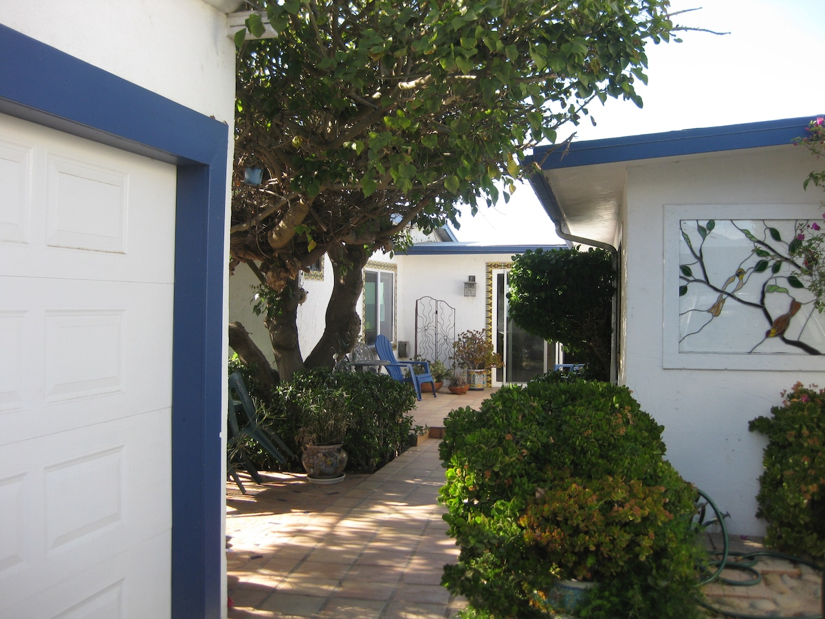 Entrance into the house. Large patio shaded by coral tree.