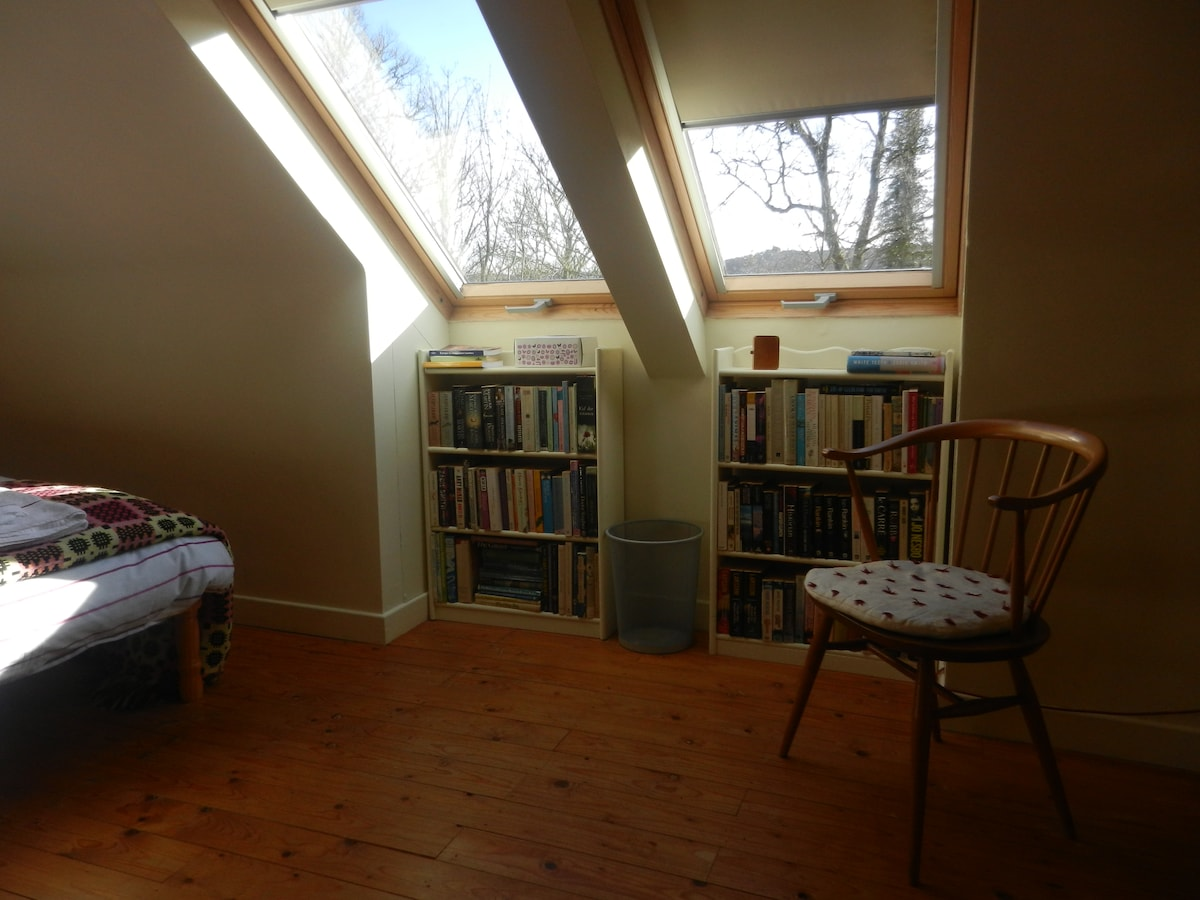 The south facing Velux windows and well-stocked bookcases.
