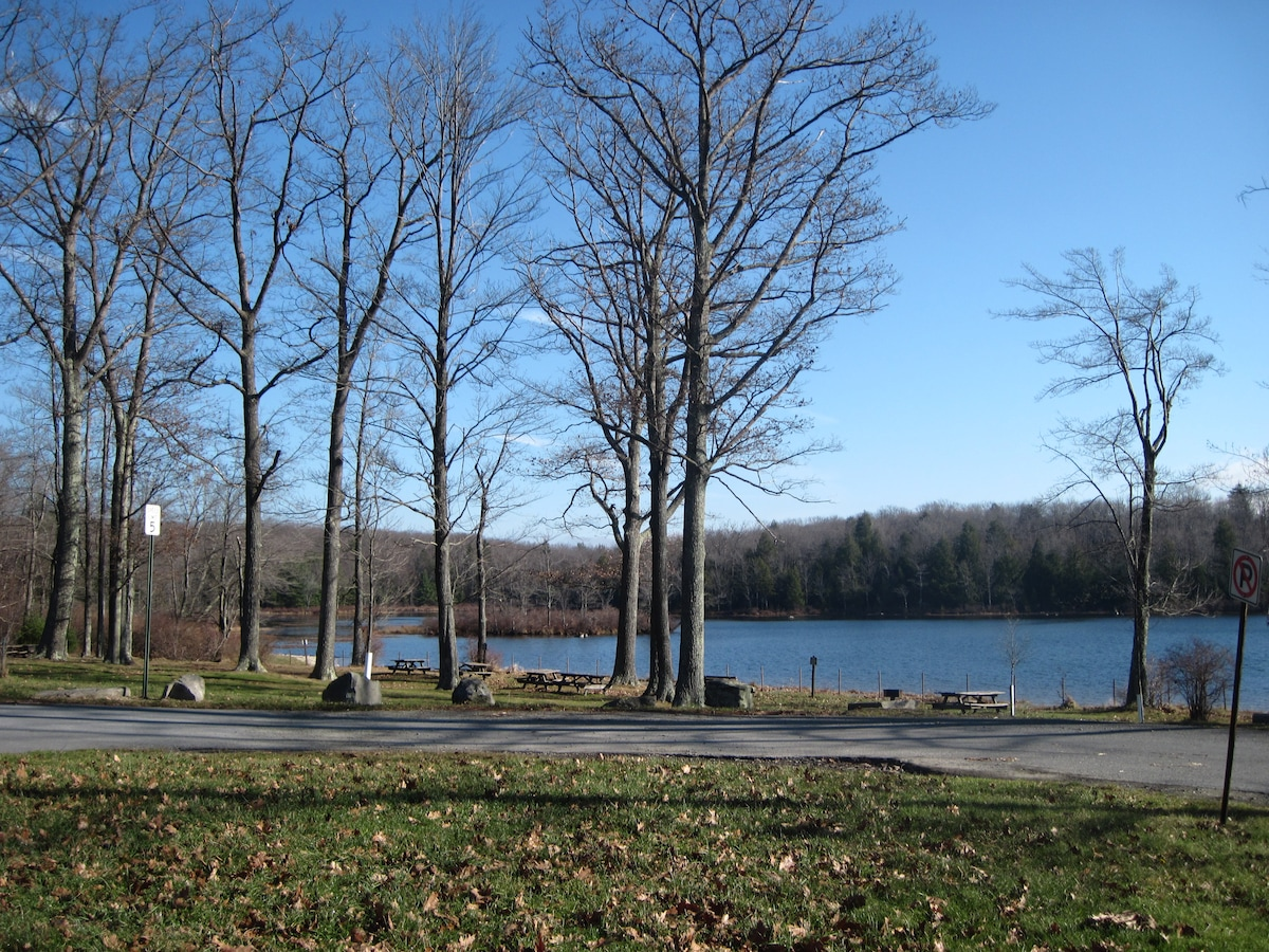 house in Mount Pocono for rent