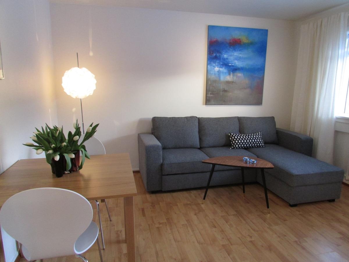 Cozy apartment near city center