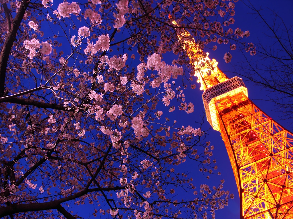 [0 minutes!] Under the Tokyo Tower