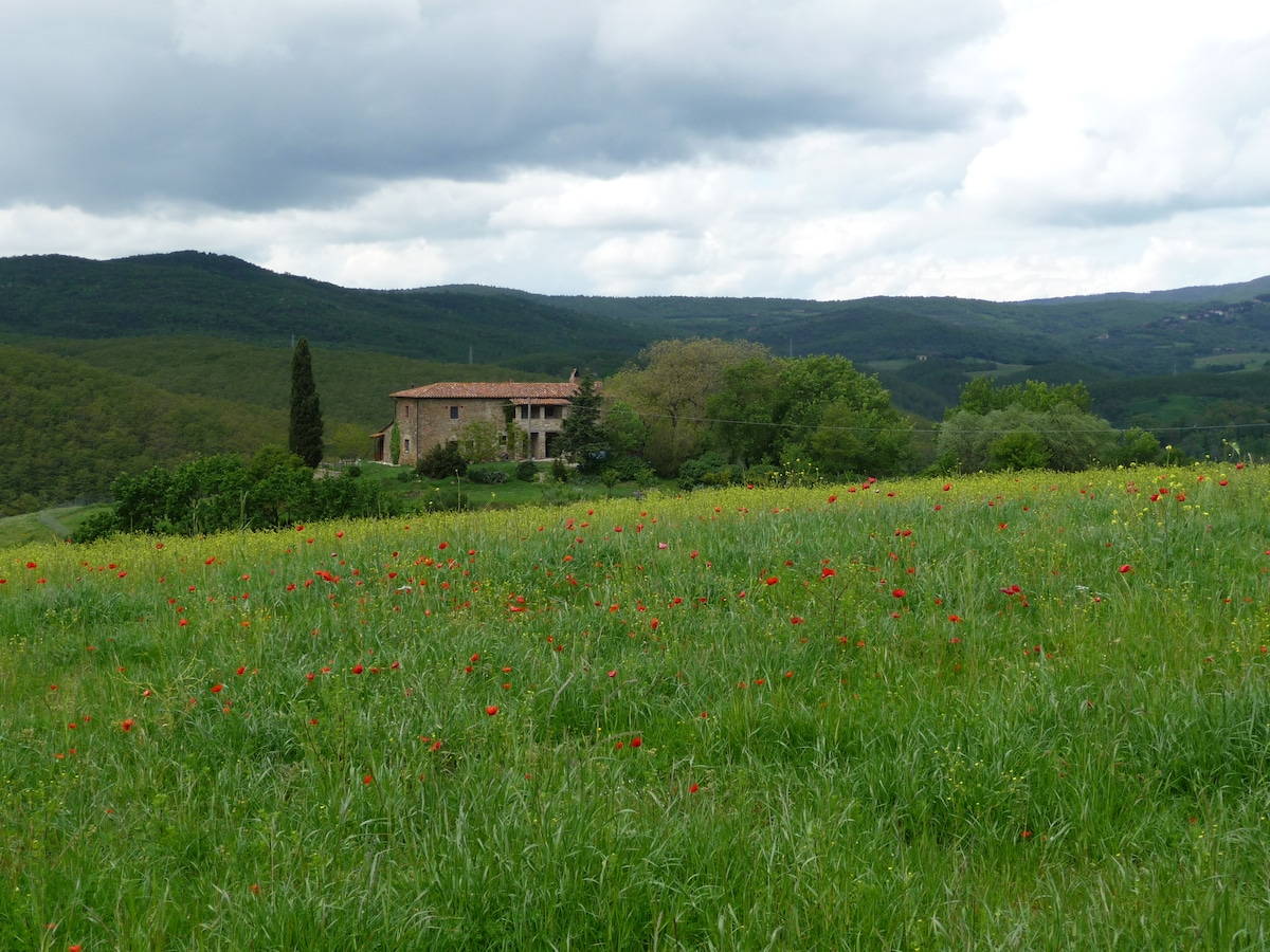 Cosy apartment in heart of Umbria!