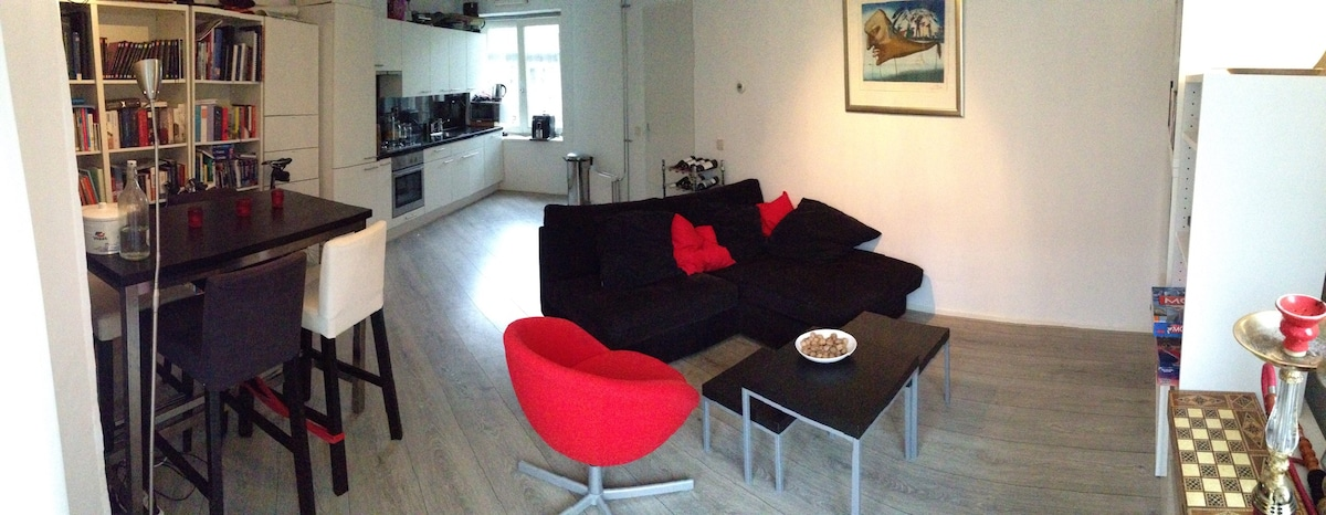 Whole apartment in historic area