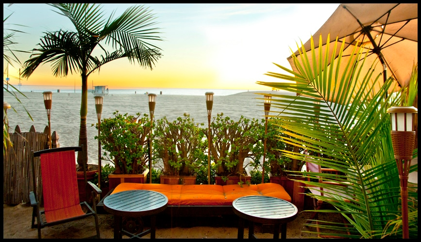 Our private, tropical palm tree patio right on the beach front.