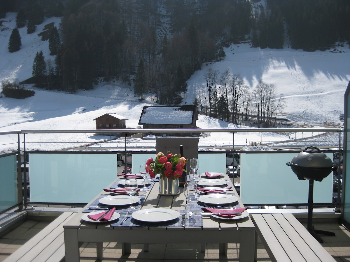 Mod. Penthouse 2 Bed Ski Apartment