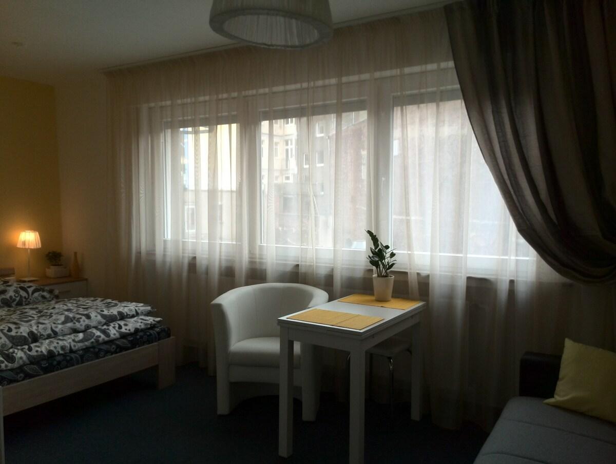 Апартаменты Людвиг в центре города.