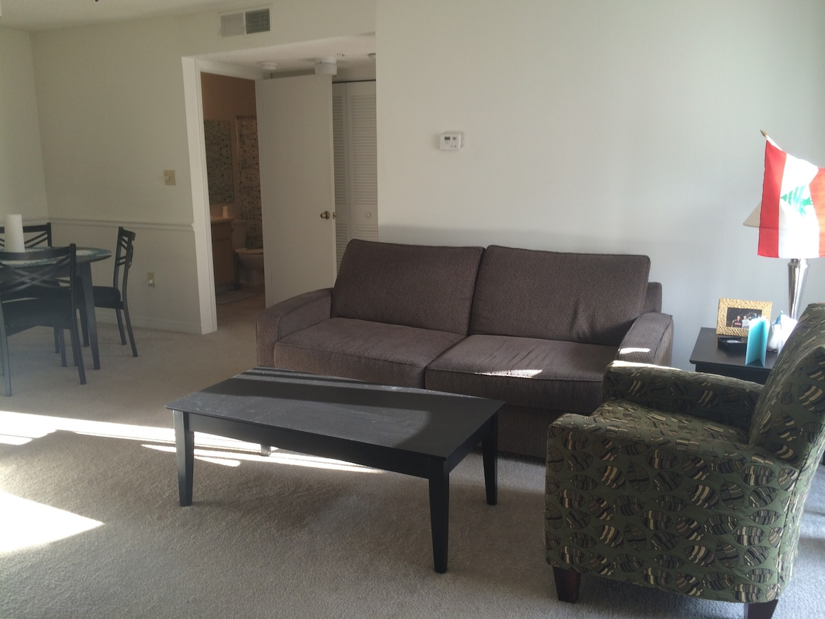 Couch Available in South Tampa