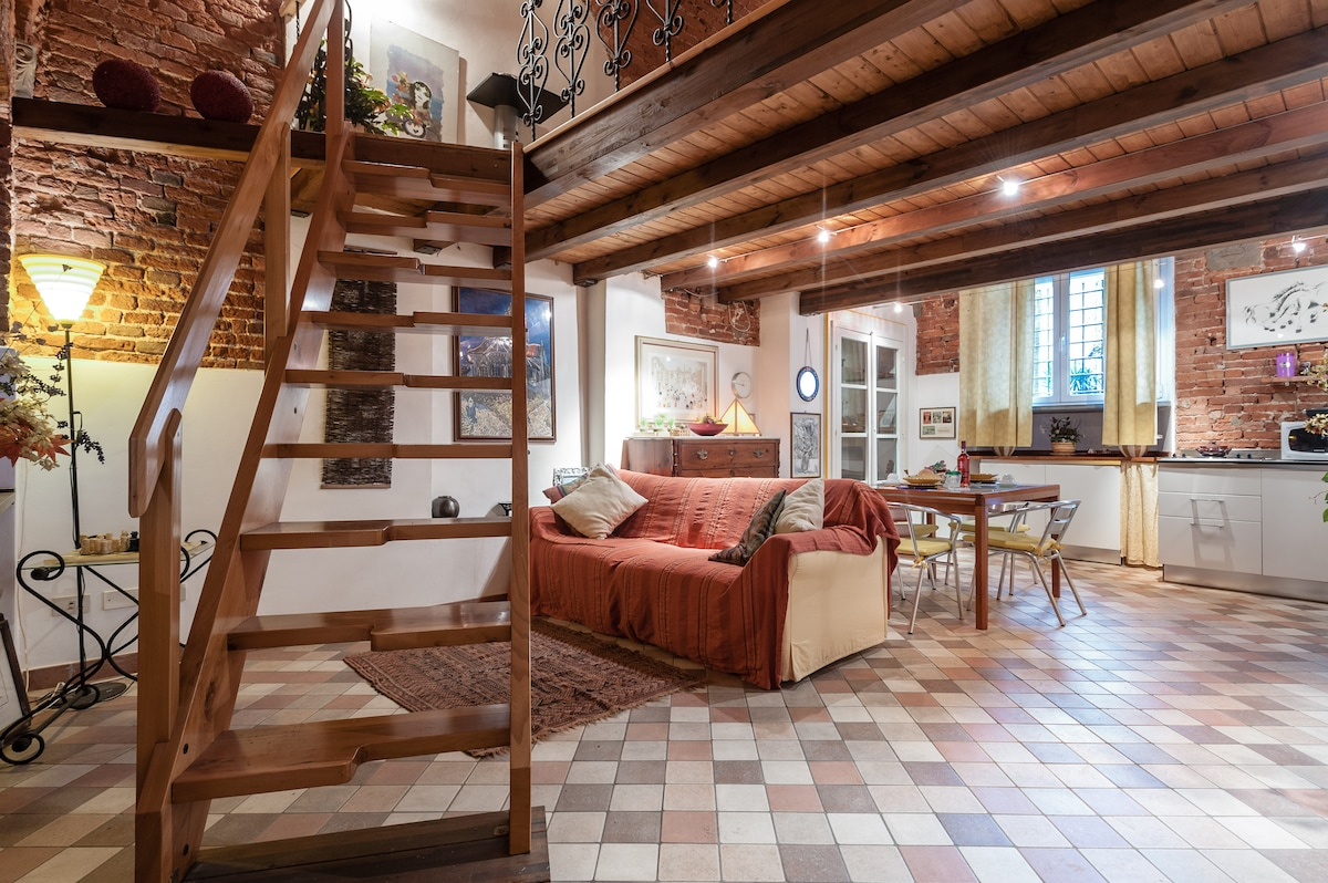 Elegante Loft in Via Fillungo