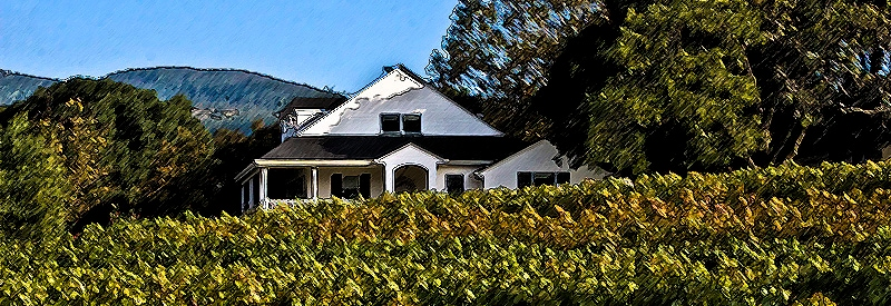 Artistic rendering of Estate home and vineyard  property