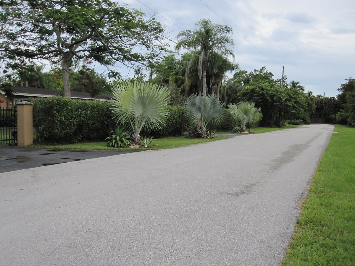 Our home is on a dead end street with minimal traffic.