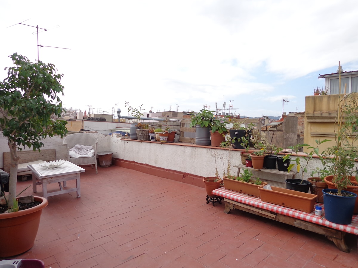 Terrace, Large  room, center