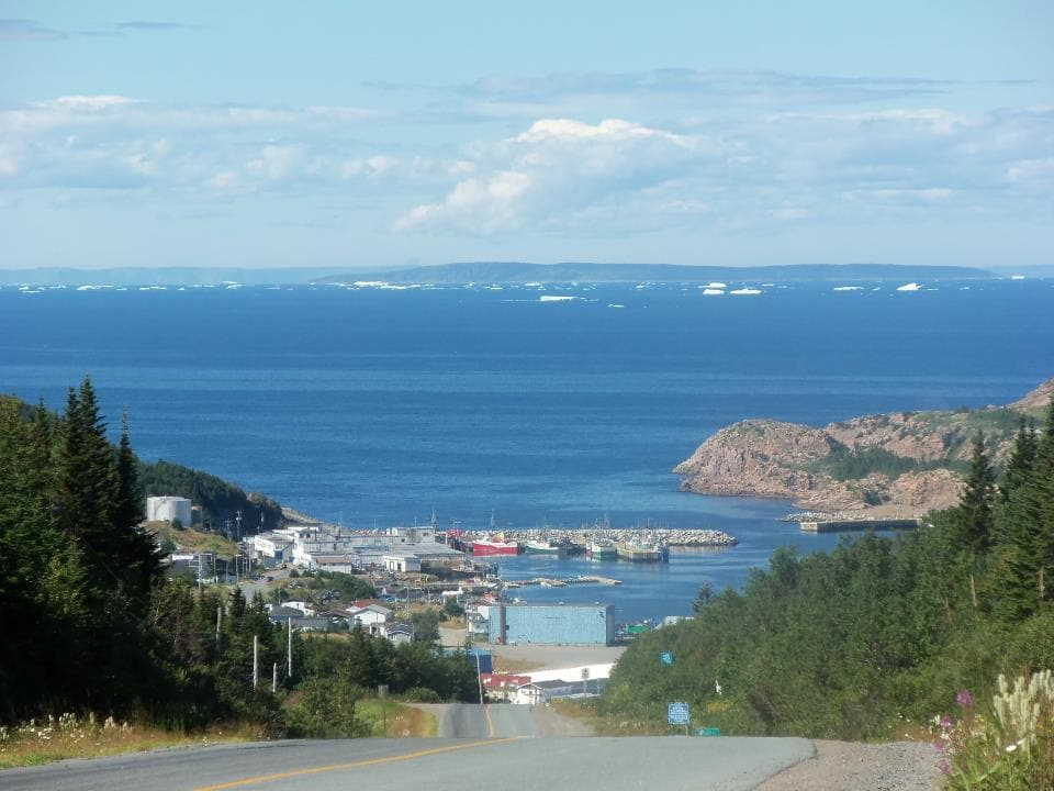 La Scie Harbour with the icebergs going along on Iceberg Alley.