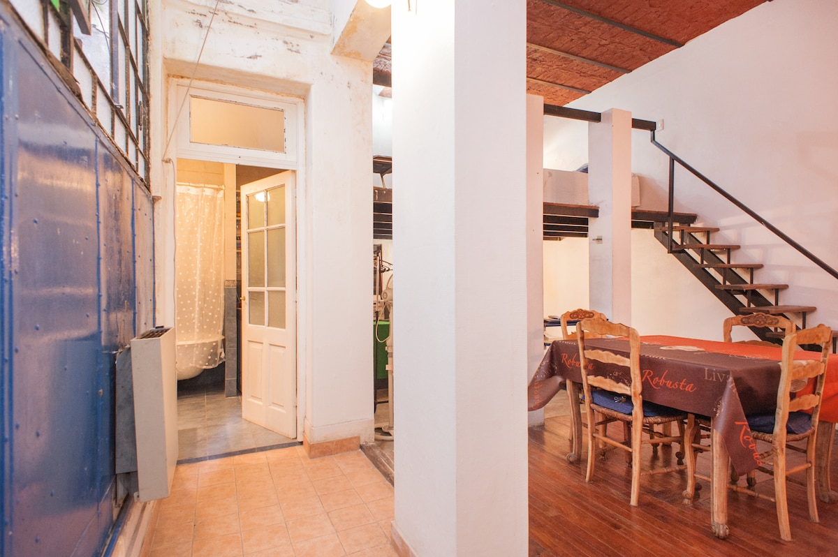 LOFT WITH OWN TERRACE IN SAN TELMO