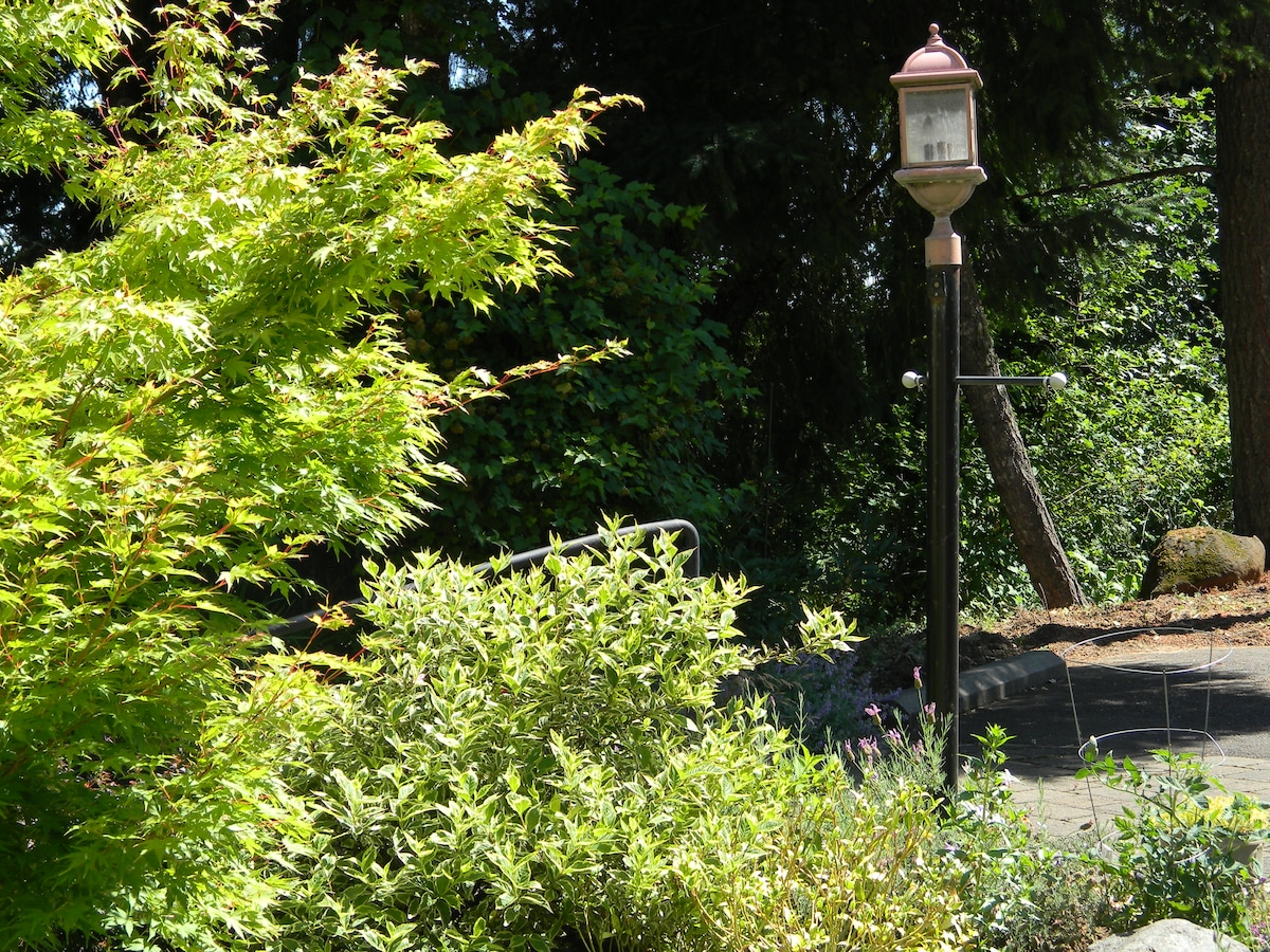Lamp post and outside stairs to private entrance