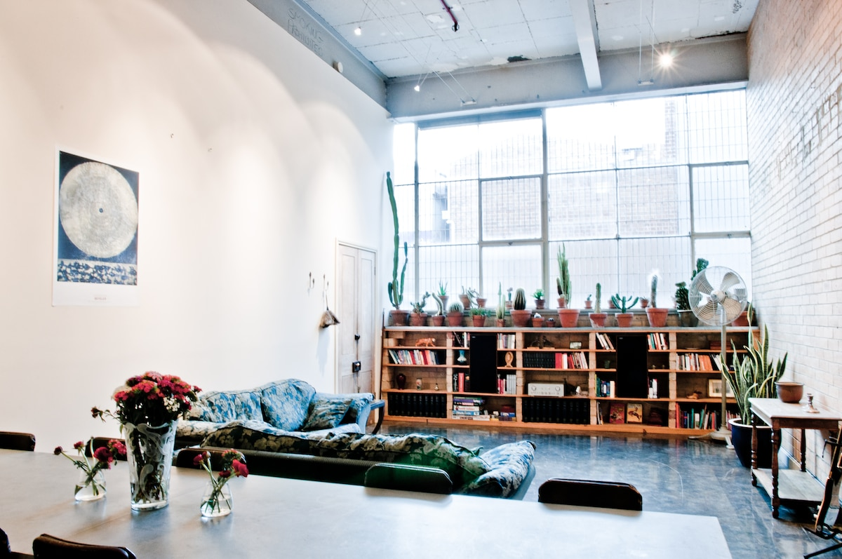 Living space, lounges, industrial fan, cacti collection, books