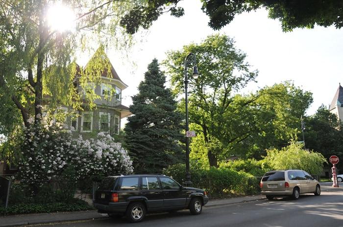 Charming Apt in Victorian Flatbush