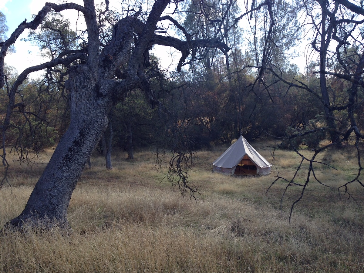 Glamping on 60 acres near Yosemite!