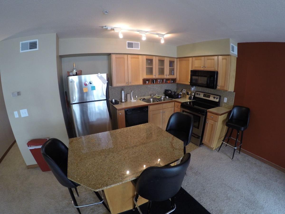 Cleveland Apartment (Downtown)