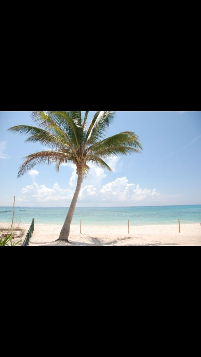 Beach Front Coco Beach Playa