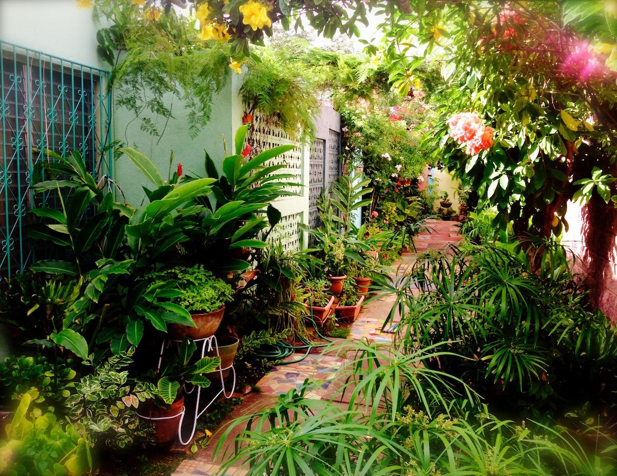 Private Room in Managua