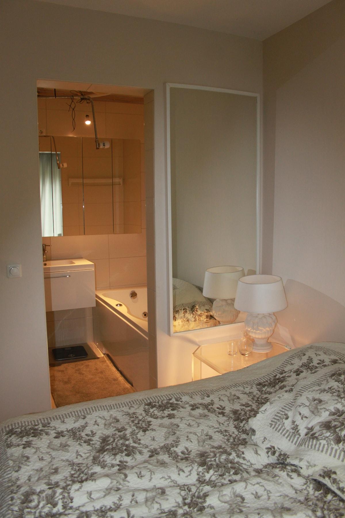 Private room in The Hague/Rijswijk