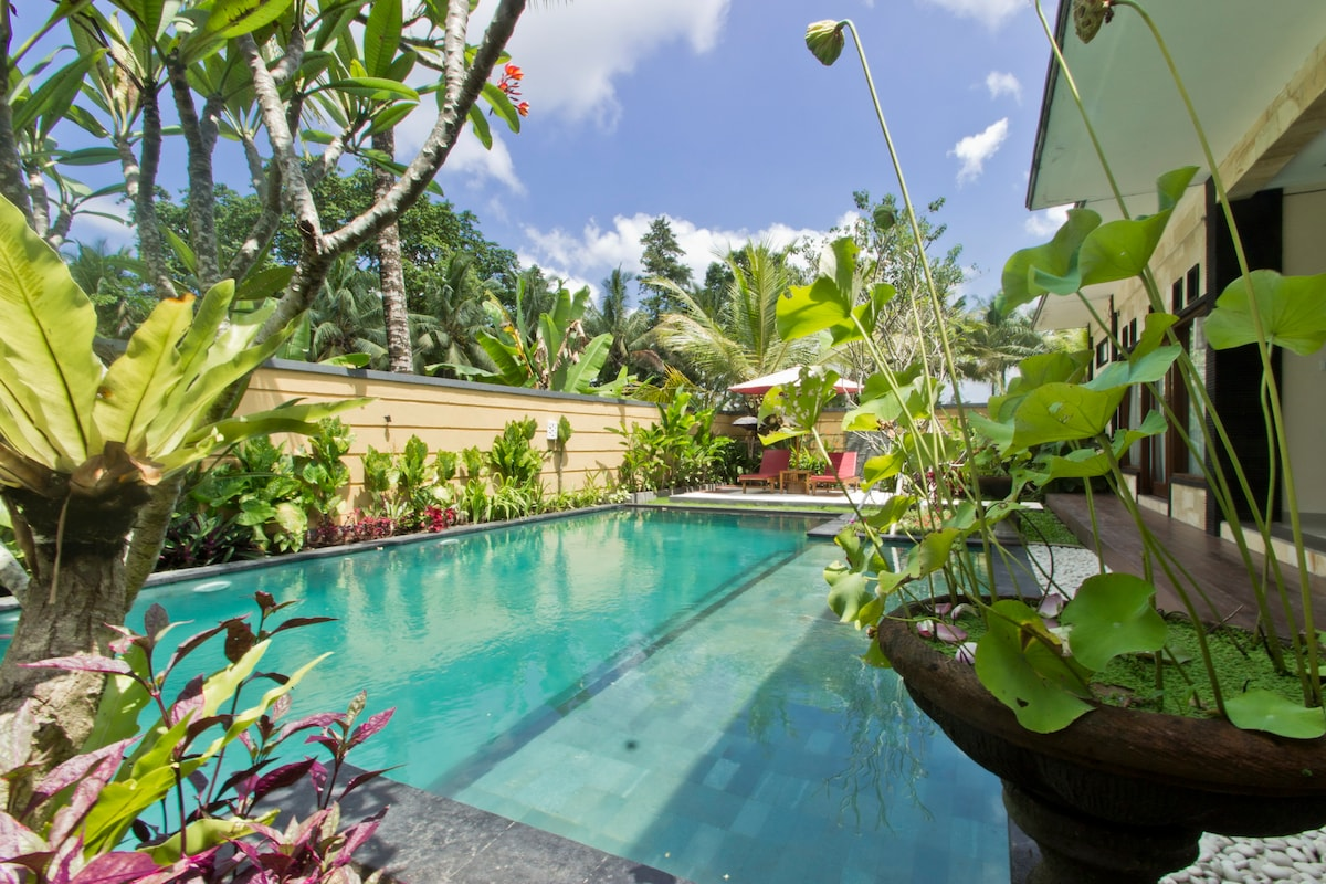 2 bed, dbl JACUZZI, 5mn Ubud Center