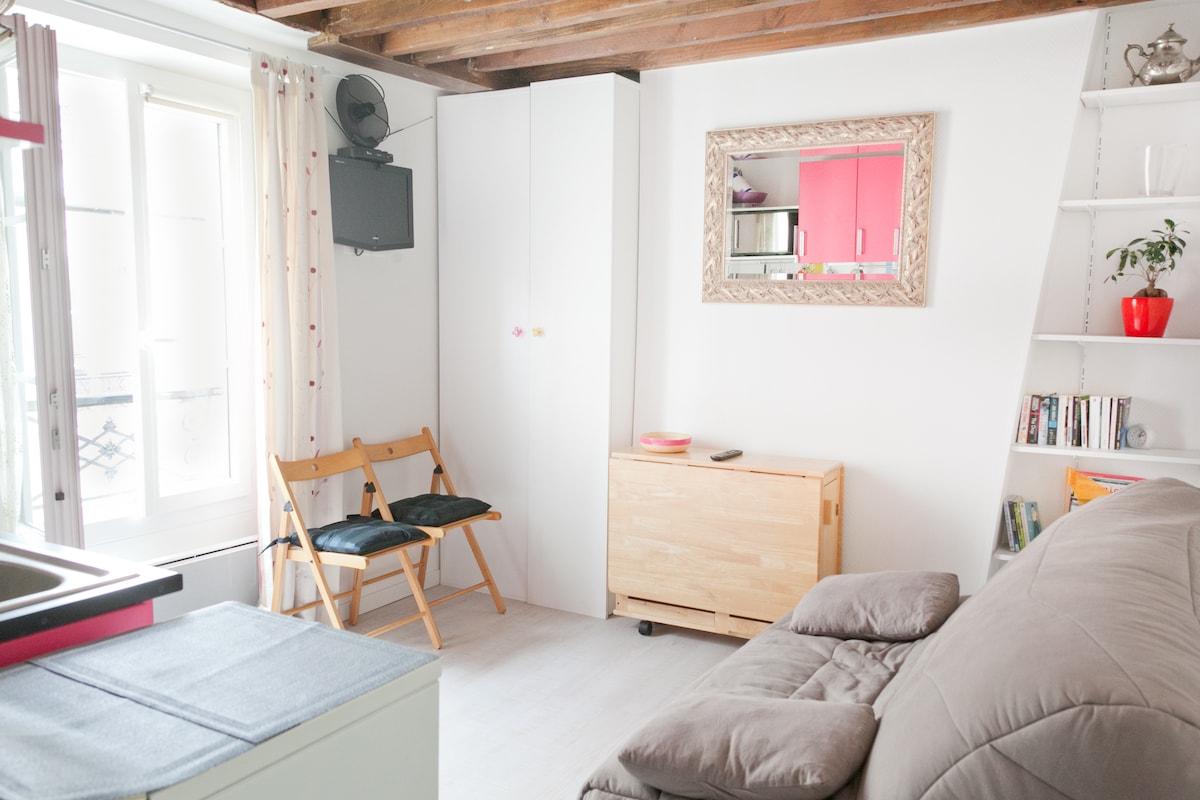 Charming studio with Wifi, Paris 13