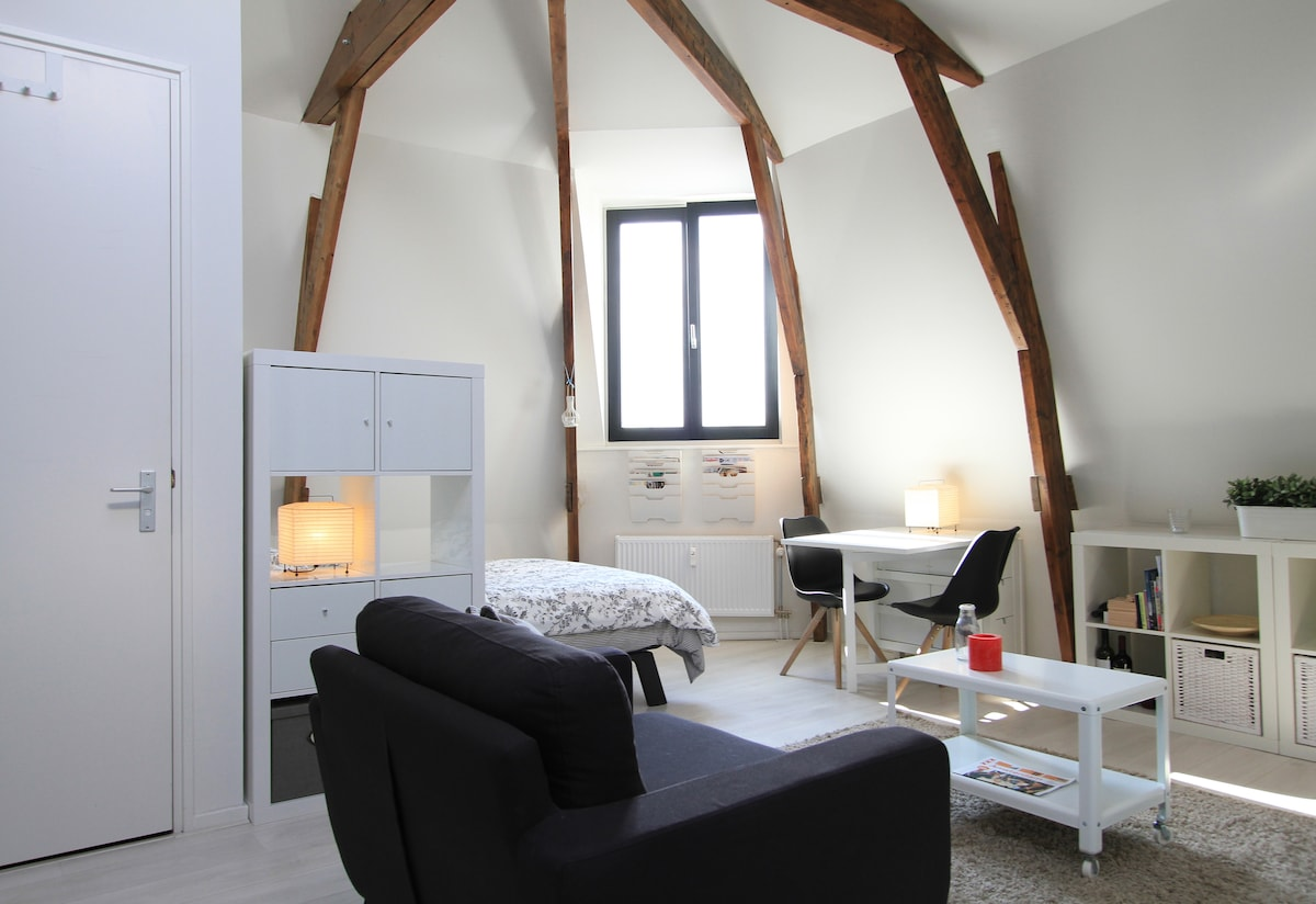 Cozy mini-loft near city centre
