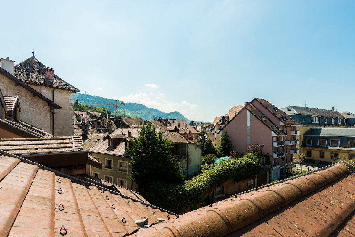 Charming apartment in old Annecy
