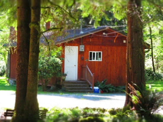 Guest Cabin in the Woods