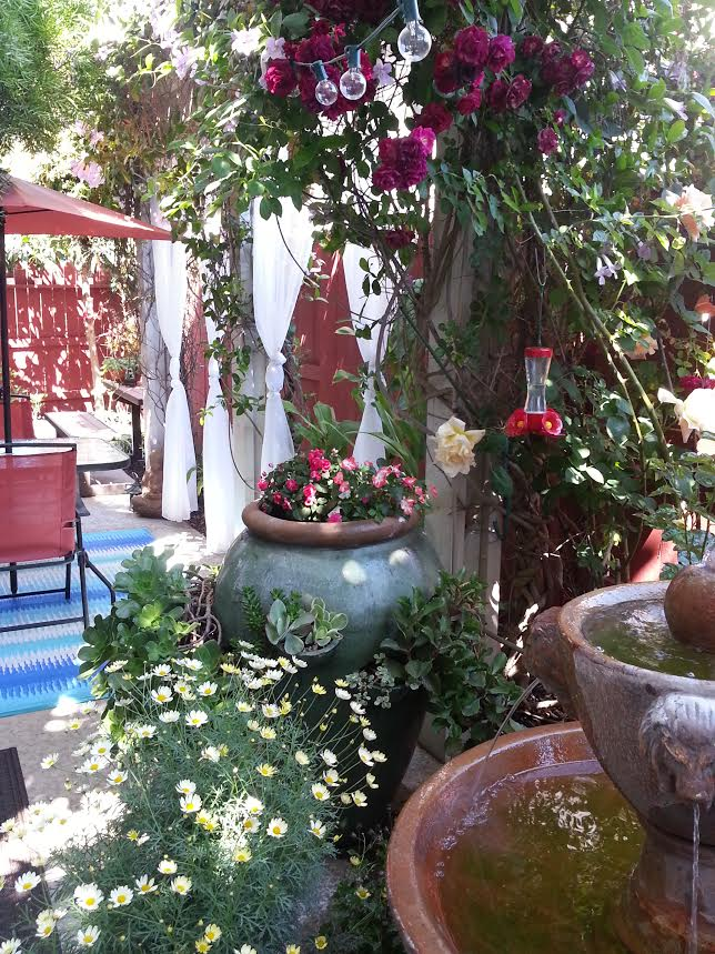 During weekends, guests can choose to dine Al Fresco. We cook our famous European breakfast. Enjoy the roses,  fountain and garden.