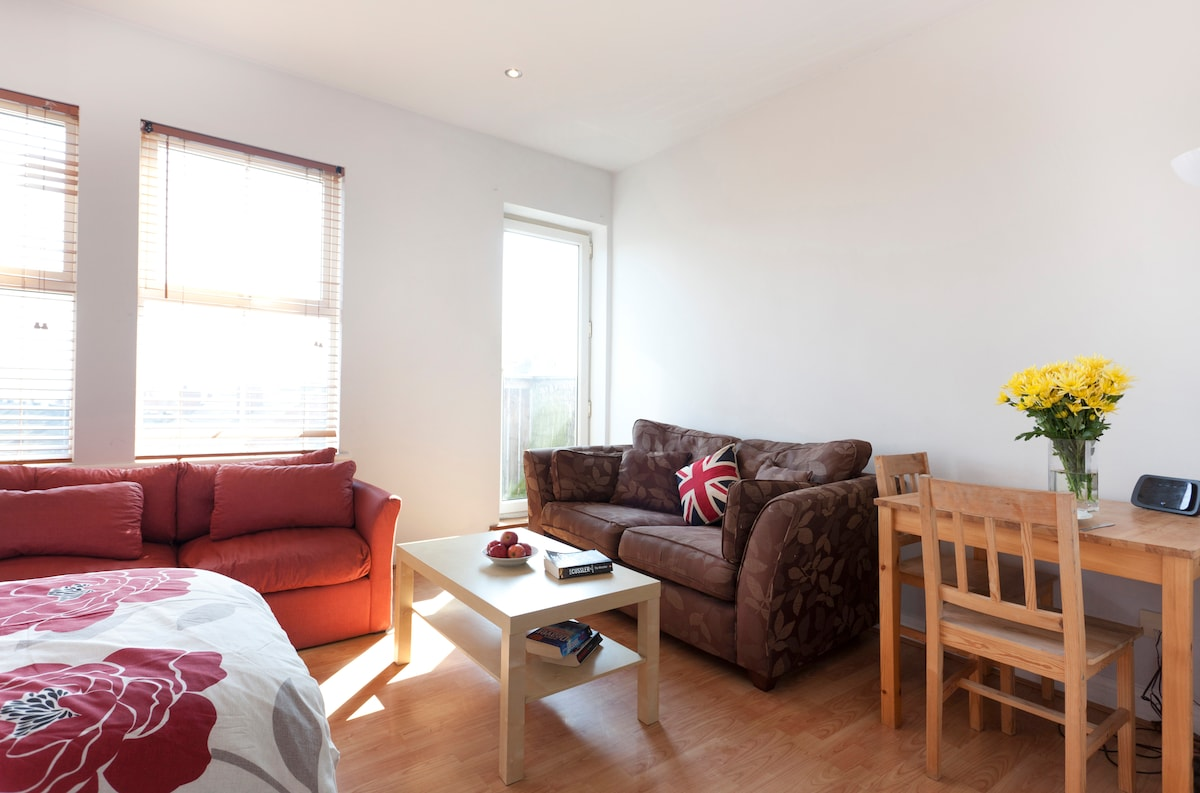 Budget Apartment-10 Mins CityCentre