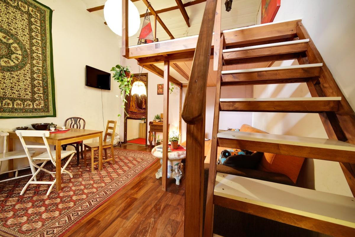 Authentic apartment, private garden