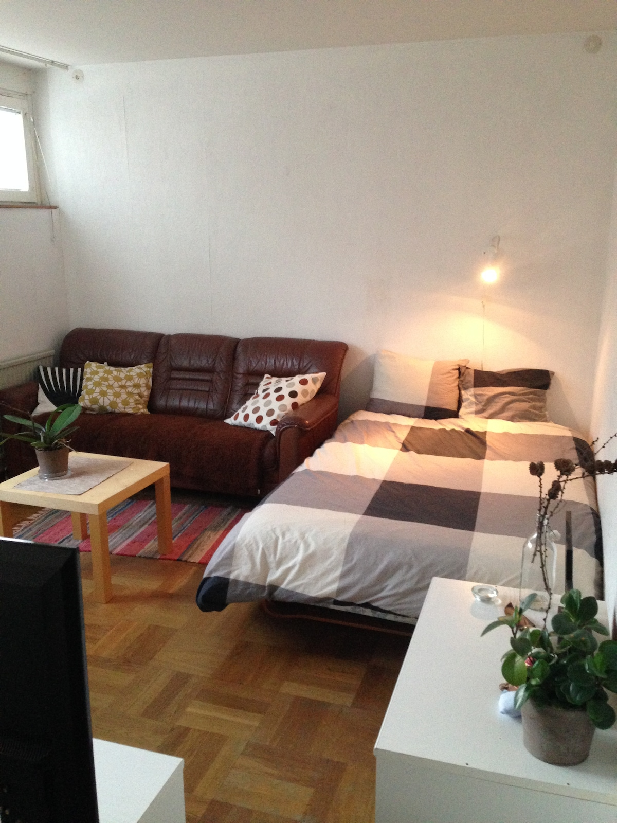 Cozy apartment near the city center