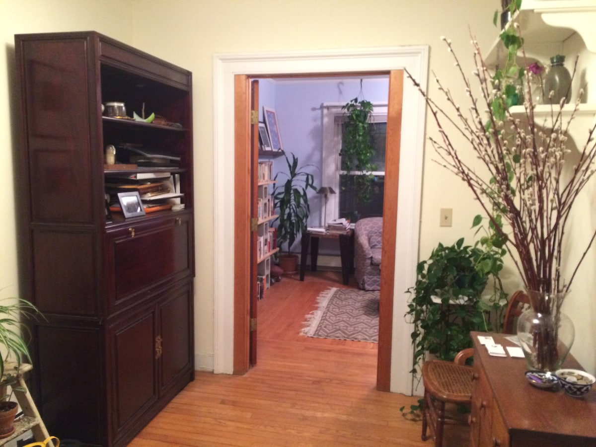 Charming, sunny 1BR in East Rock