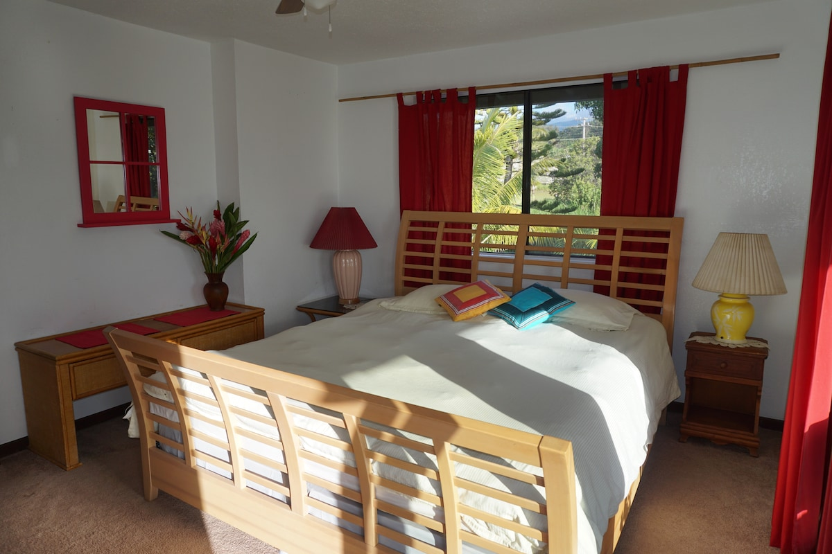 Sunny GUEST BEDROOM with the View