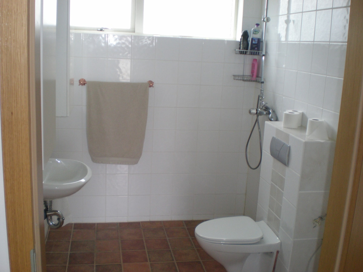 One bedroom apartment, car included