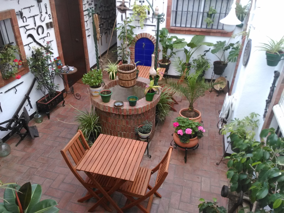 Charming apartments in Jerez...