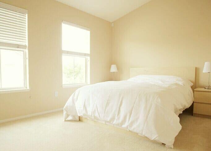 Mountain View Master Suite + Bath