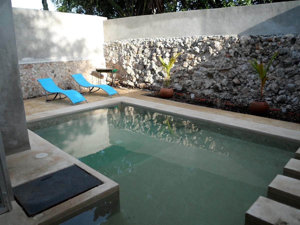 Merida Mexico Pool House (Santiago)