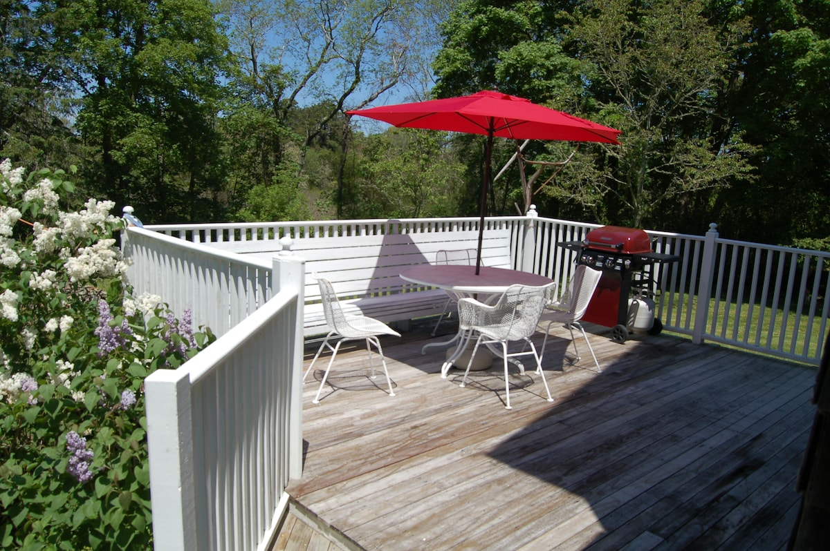 Back deck with bench seating, table and chairs, grill