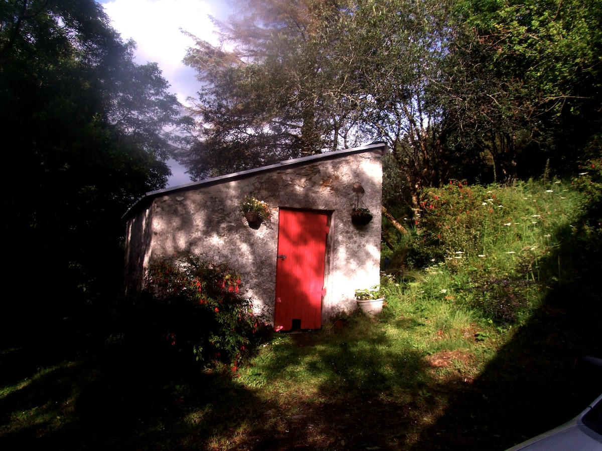 The wee wood shed