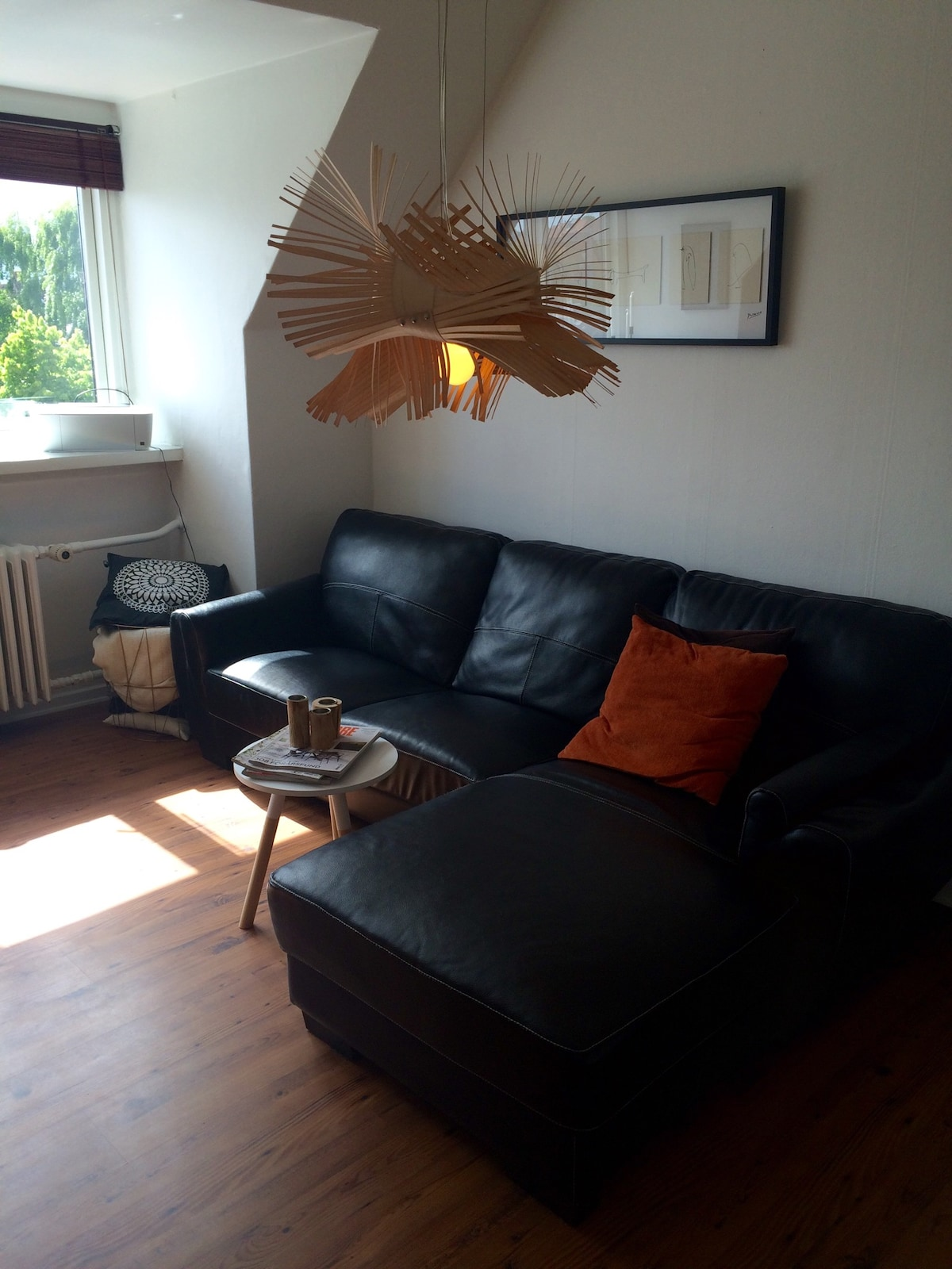 Cozy apartment in Central Odense